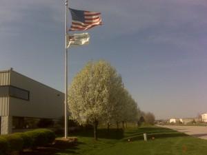 building-7-flag2-300x225